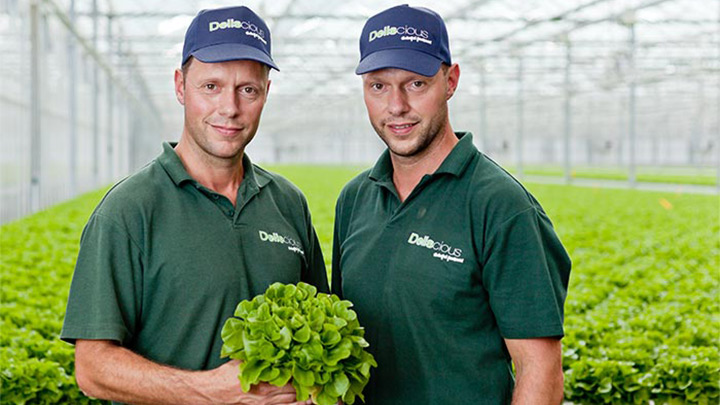 Roy and Mark Delissen, the owners of Deliscious, a lettuce growth company which uses Philips horticulture lighting