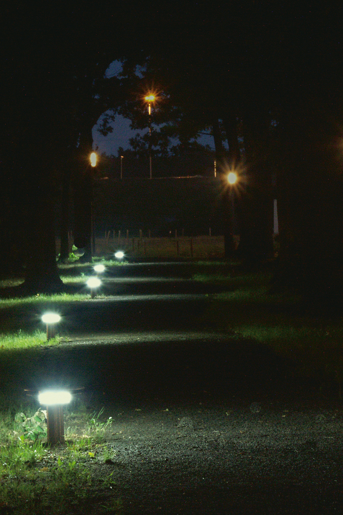 Walking path at High Tech Campus lighted up with Philips outdoor lighting to increase safety in the night