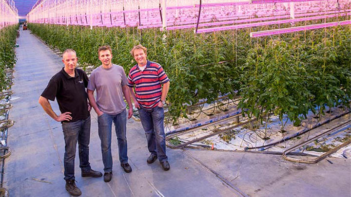 Three men posing at the Van nature Jami greenhouse lit by Philips lighting