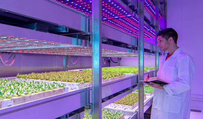 Philips GrowWise Center